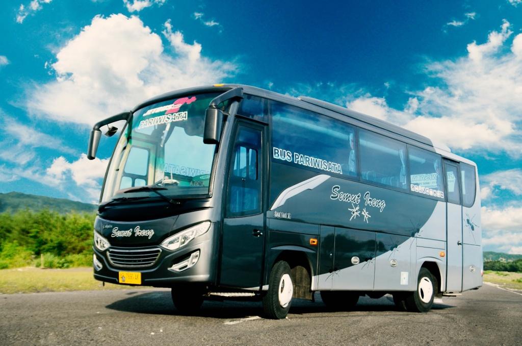 Medium Bus Adi Putro 2015