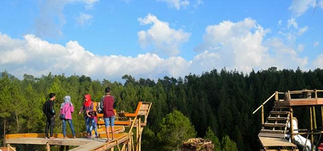 Tempat Selfie Hutan Punus Kragilan