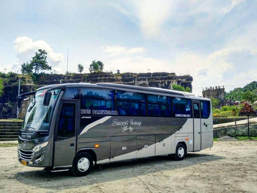 Medium Bus 37-41 seat