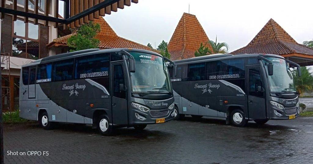 Medium Bus Semut Ireng Transport